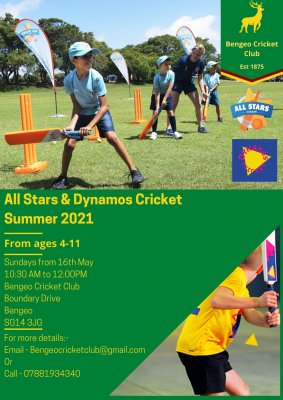 Image for All Stars and Dynamos Cricket